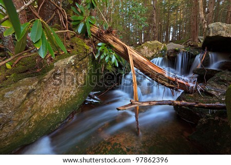 Stream and waterfalls in spring in the mountains