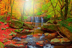 Stream flowing in the depths of the forest. Wonderful autumn landscape. Colorful tree leaves, orange red, green, yellow. Suuctu, Bursa, Turkey.