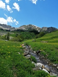 Stream flowing through the middle of lush nature from among the snowy mountains