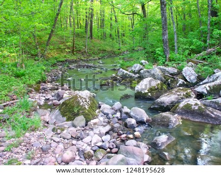 Stream flows through a dense woodland at Baxters Hollow State Natural Area in southern Wisconsin