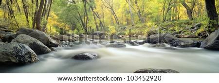 Stream in Cottonwood Canyon, Sedona, Arizona