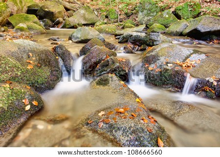 Stream in forest autumn