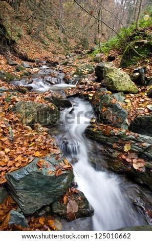 Stream in mountain, autumn