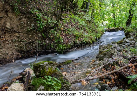 stream in the forest #764133931