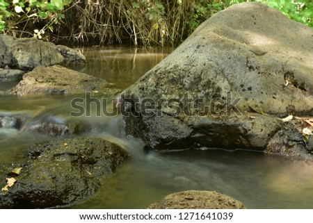 Stream of water in the stream