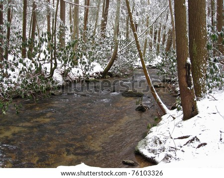 Stream through a snow-covered forest