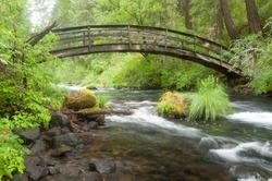 Stream under a wooden bridge in the forest