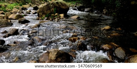 Stream, Water stream, Avalanche, Ooty