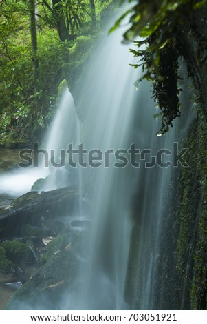 Stream & Waterfalls in Greenbrier in Great Smoky Mountains National Park, TN #703051921