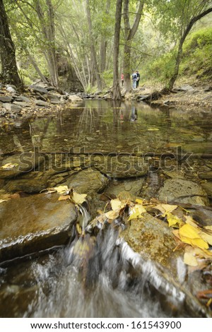 streaming water between rocks with autumn leaves, river flow with long exposure giving smooth water surface, Andarax River in Almeria, Spain