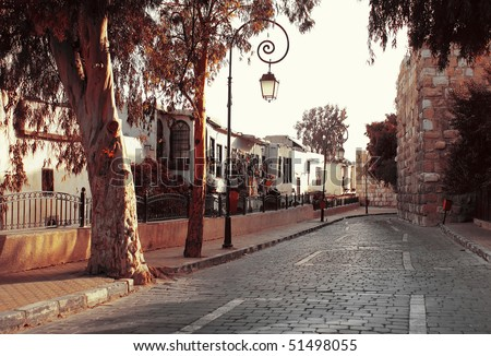 Street in old Damascus with trees - stock photo