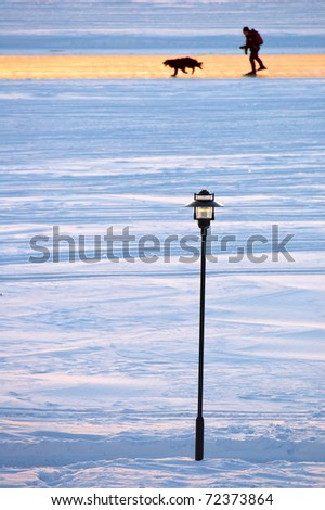street lamp in front of skater and dog on ice road on the lake