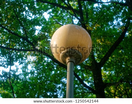 street lamp in the Park against a tree in the summer, Moscow  #1250542144