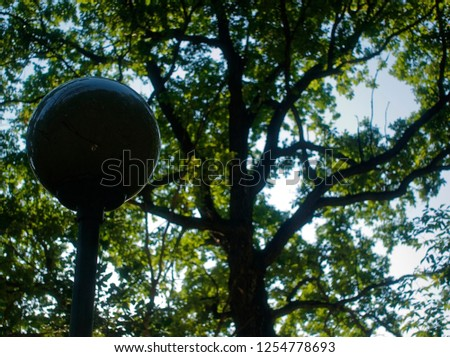 street lamp in the Park against a tree in the summer, Moscow #1254778693