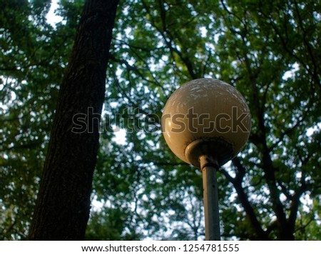 street lamp in the Park against a tree in the summer, Moscow #1254781555