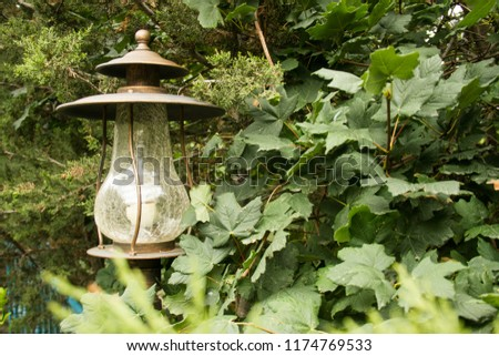 street lamp old lamp lamp in the forest interesting lamp  #1174769533