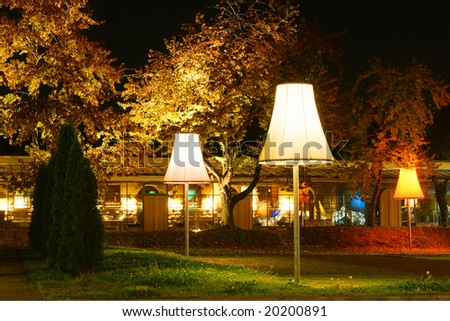 Street lamps illuminating garden