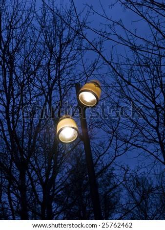 Street lighting towards a blue sky