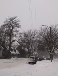 Street of a quiet neighborhood covered with snow, with parked cars and bare trees. Winter weather with extreme cold. Bike lane, houses and power poles in winter.