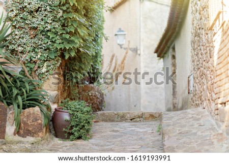 Street of an ancient city in Spain with plants in pots and pavers.