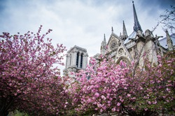 Street of Paris. France.
