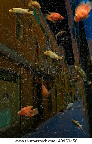 Street of the flooded city with fishes