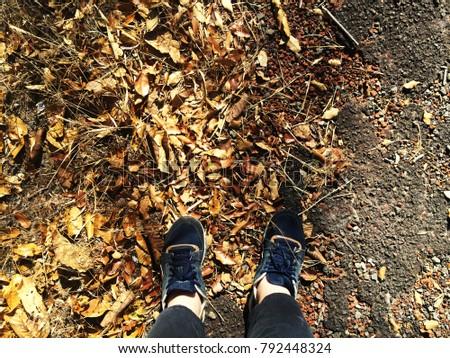 street on fallen season  #792448324
