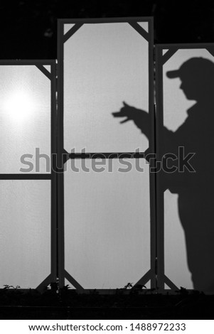 Street shadow play (shadow puppetry) #1488972233