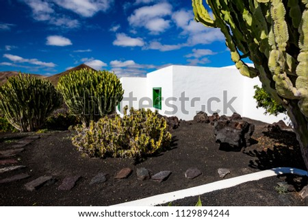 Street view of beautiful residential white stone garden house surrounded by black volcanic soil and huge cactuses with patio and great blue spring sky with white clouds, Lanzarote,Canary Islands,Spain #1129894244
