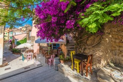 Street with flower on Capoliveri village in Elba island, Tuscany, Italy, Europe