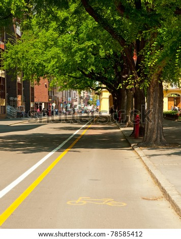 Street with yellow lines in the city