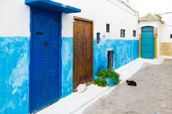 Streetscene, Houseentrances in the Streets of the Kasbah of the Udayas, Rabat, Morocco. Two cats sitting on the street.