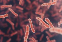 Streptococcus pneumonia red cells. 3D render background
