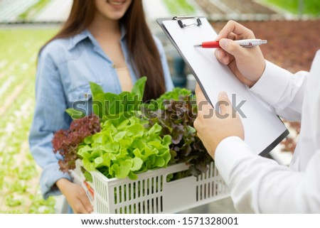 Strict inspection of organic vegetables after harvest for export to the market. Women carrying a vegetable basket to check the quality of vegetables from the male inspectors of the farm.