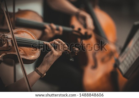 String quartet with cello in the background - Wallpaper, Background