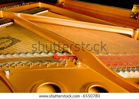 Strings from inside a Grand Piano