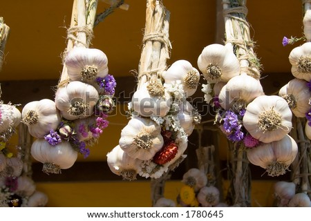 Strings on fresh garlic with dried flowers