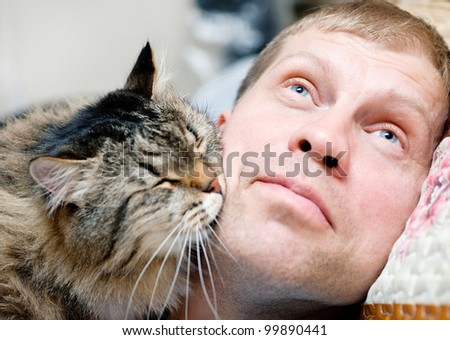 Striped cat kissing man