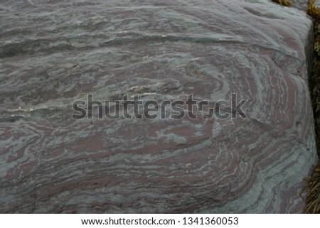 Striped Gneiss Tadoussac Québec #1341360053
