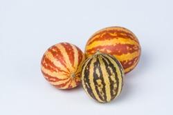 Striped little decorative pumpkins on a white background