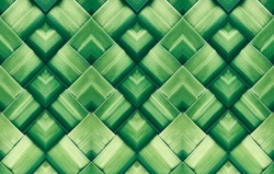 Striped of palm leaf, Abstract green texture background