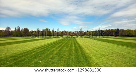 Stripes across a polo field near Windsor #1298681500