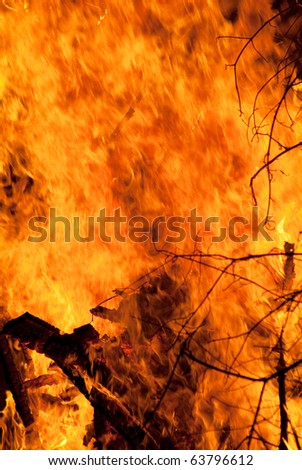 Strong fire from the tree branches