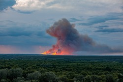 Strong fire with a lot of smoke in the forests of the Voronezh region.