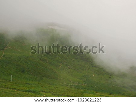 Strong fog in the mountains, thick fog, mountains in the fog #1023021223