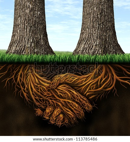Strong foundation as a business concept of stability and loyalty with two trees with roots under ground in the shape of hands shaking as a symbol of agreement and merging forces together for success. - stock photo