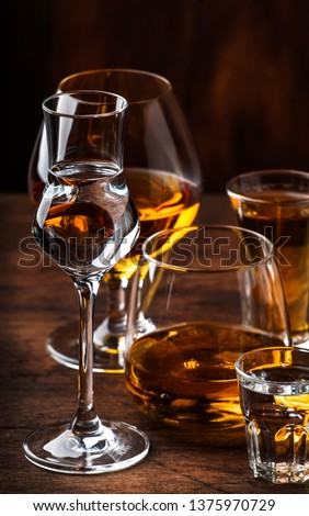 Strong Spirits Set. Hard alcoholic drinks in glasses in assortment: vodka, cognac, tequila, brandy and whiskey, grappa, liqueur, vermouth, tincture, rum.  #1375970729