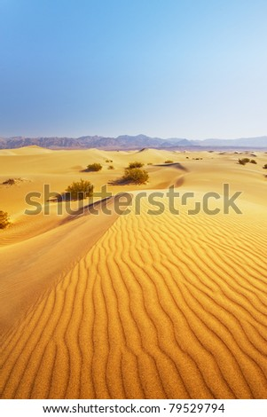 Strong wind blows the sand of the sand dunes in the desert with mountain in the background