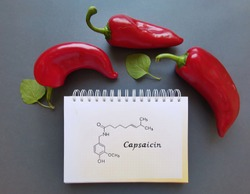 Structural chemical formula of capsaicin molecule with red chili peppers. Capsaicin is a chili pepper extract with analgesic properties, and an active component of chili peppers.
