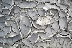 Structure cracked soil (earth) texture, desert cracks, dry surface. Arid and drought land floor has many grooves and scratches. Soil erosion
